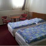 Tetőtéri zuhanyzós kétágyas szoba (pótágyazható)