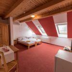 Apartament 3-osobowy Premia z widokiem na park z 2 pomieszczeniami sypialnianymi