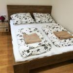 Economy Tourist Apartman s manželskou postelí s 1 ložnicí