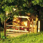 Cabana family cu baie comuna pentru 4 pers. (se inchirieaza doar integral)