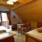 Apartament 3-osobowy Studio z 1 pomieszczeniem sypialnianym (możliwa dostawka)