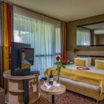 1-Zimmer-Suite für 3 Personen
