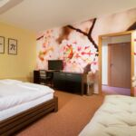 Air Conditioned Twin Room with Shower (extra beds available)