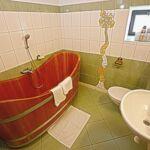 Zuhanyzós saját teakonyhával 5 fős apartman (pótágyazható)