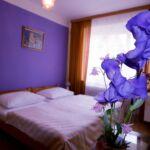Hotel Bor Lhota