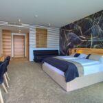 Deluxe Pogled na more soba sa francuskim krevetom (za 2 osoba(e))
