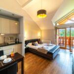 Apartament 2-osobowy Studio z widokiem na góry z 1 pomieszczeniem sypialnianym