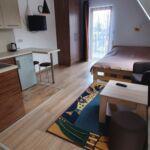 Apartament 2-osobowy z balkonem z aneksem kuchennym z 1 pomieszczeniem sypialnianym