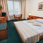 Camera dubla standard cu grup sanitar (se poate solicita pat suplimentar)