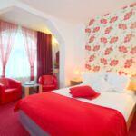 Superior soba sa francuskim krevetom (za 2 osoba(e))