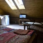 Apartment for 2 Persons with Shower and Kitchenette (extra bed available)