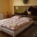 Einzelzimmer mit Dusche (Zusatzbett möglich)