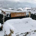 Domek drewniany 14-osobowy