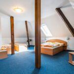 Standard Sa tuš kabinom soba sa 0 kreveta(om) (za 4 osoba(e))