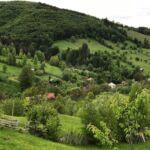 Exclusive Bauernhaus mit Garten (Zusatzbett möglich)