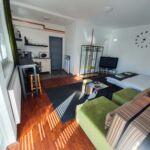Apartament familial(a) cu chicineta proprie cu 1 camera pentru 2 pers. (se poate solicita pat suplimentar)