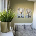 Apartament studio cu gradina cu 1 camera pentru 2 pers. (se poate solicita pat suplimentar)