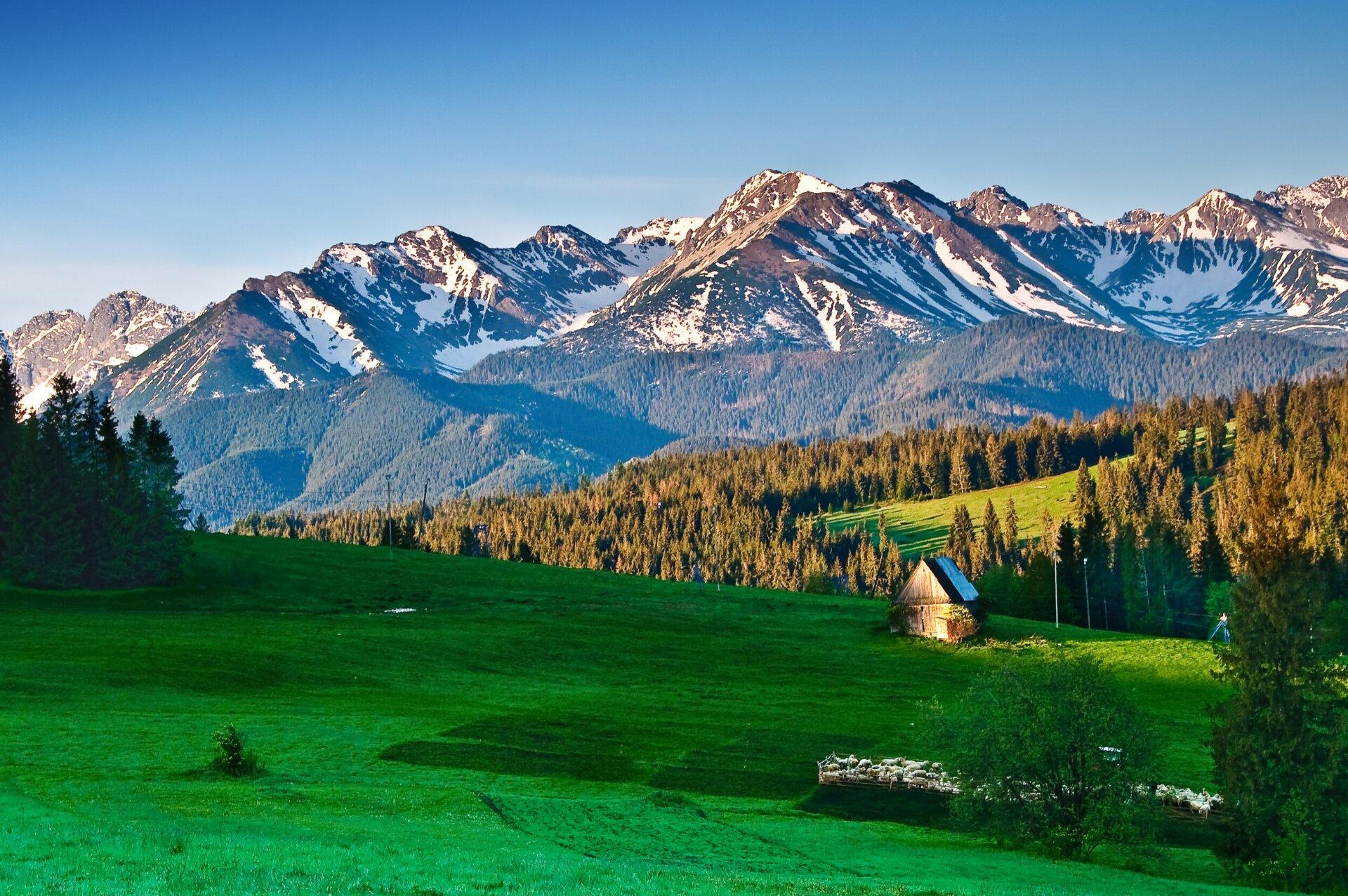 Planujesz wakacje w górach?